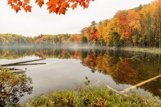 Fog gathers on the still, reflective surface of northern Michigan's Ransom Lake in the fall