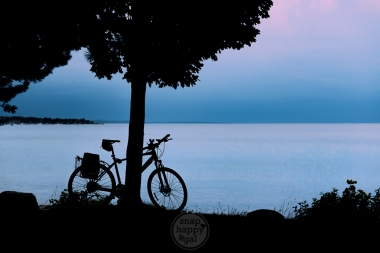 A bicycle rests against a tree along West Grand Traverse Bay on Lake Michigan in Traverse City