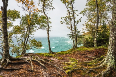 Craggy trees perched atop Michigan's Pictured Rocks sway in a stiff breeze