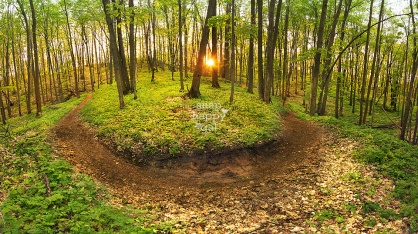 Photo: The sunset bursts through the spring woods in Michigan's Glacial Hills Pathways, outside Bellaire