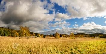 golden-fall-pasture-panorama-10150209