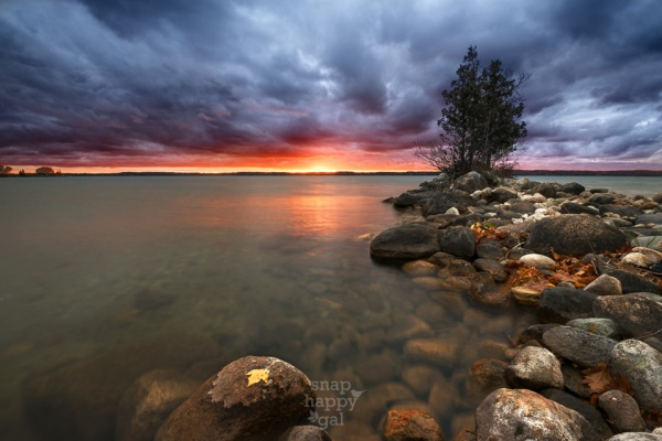 A single golden leave clings to a rock along Torch Lake's shores under a bright sunset glow