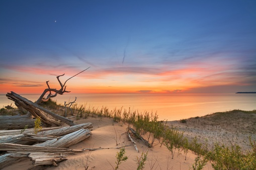 Photo: After-sunset glow at a ghost forest perched over Lake Michigan