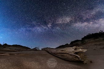 A fallen tree in the ghost forest rests under the countless stars in the Milky Way