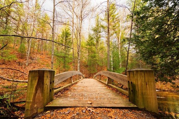Photo: Arched wooden footbridge