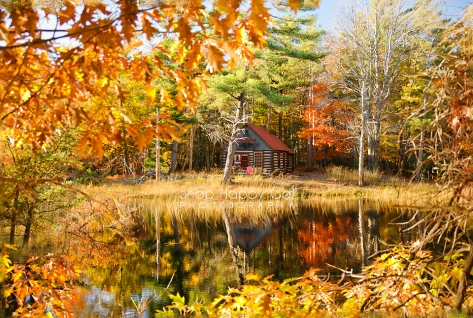 Photo: log cabin, fall pond reflections