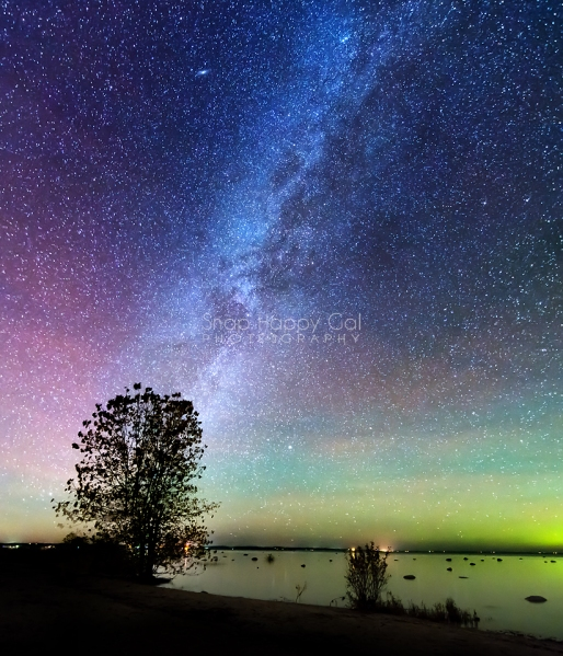 Photo: Milky Way, silhouetted trees, northern lights, air glow