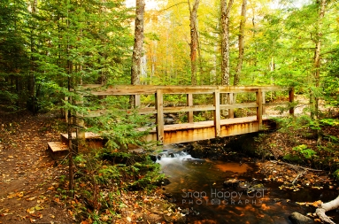 Photo: Footbridge over a small creek in Michigan's Upper Peninsula