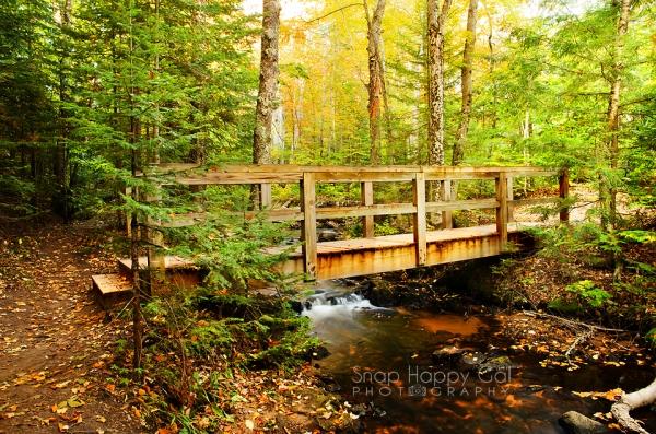 Photo: Footbridge over a small creek in Michigan's Upper Peninsula