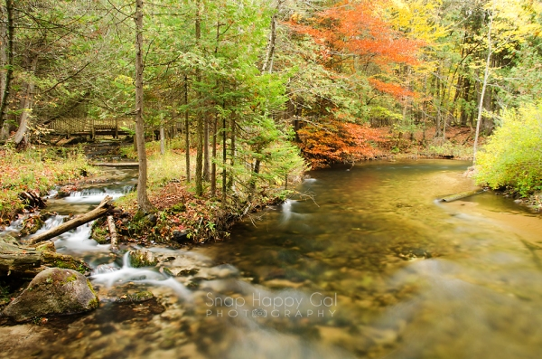 Photo: Forks of the Rapid River converge in a mini-waterfall; fall color