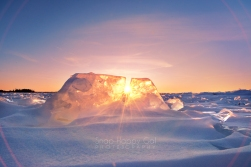 Photo: The sun shines through a toothy Lake Michigan ice formation.