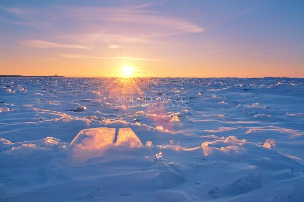 Photo: A sunburst shines over the ice on Lake Michigan