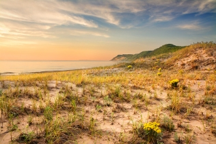 Photo: dunes, bluffs, wildflowers - Sleeping Bear Dunes Lakeshore, Empire, Michigan