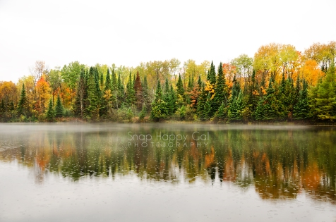 Photo: raindrops on a fall color lined pond, fog and reflections