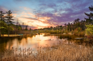 Photo: Sunset over Michigan river wetlands