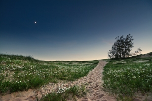 Photo: A crescent moon hangs in the twilight over a trail in the Sleeping Bear Dunes