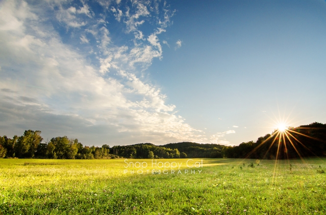 Photo: sunburst over summer meadow