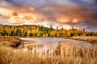 Photo: colorful sunset, fall, wetlands, Grass River