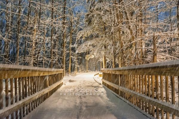 Photo: fresh tracks across a snowy bridge