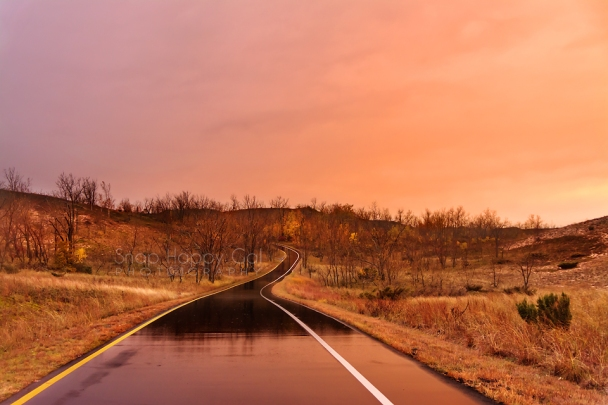 Photo: sunset reflections on a wet road in the Sleeping Bear Dunes