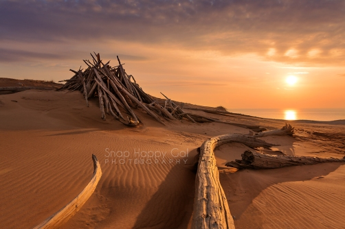 Photo: golden hour, ghost forest, lean-to shelter in the Sleeping Bear Dunes