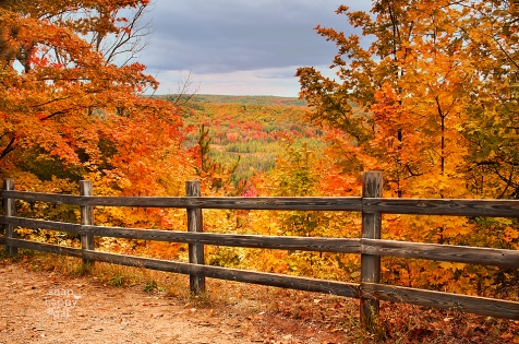 deadmans-hill-fall-color-fence