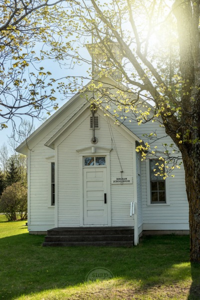 Spring leaves catch the light above the old Bingham Schoolhouse in Leelanau County
