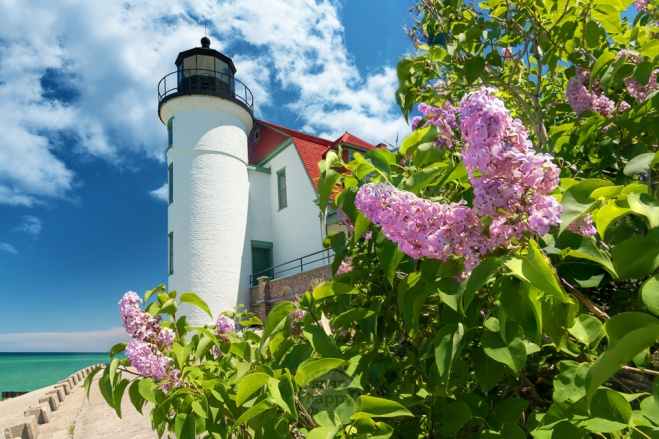 Fragrant lilacs frame Point Betsie Lighthouse on Lake Michigan