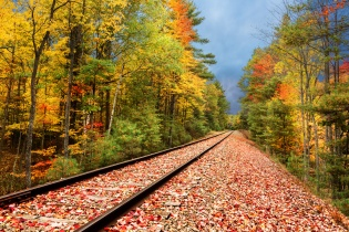 A railway punches through a fall woods under moody skies