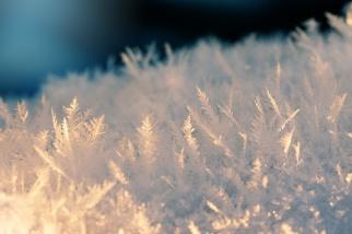 macro-frost-crystals-01191558