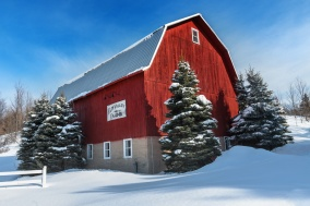 snowy-red-barn-blue-sky-winter-michigan-03192077
